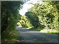 TL0217 : Buckwood Lane by Robin Webster