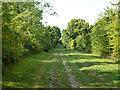 SP9822 : Byway, Castle Hill, Totternhoe by Robin Webster