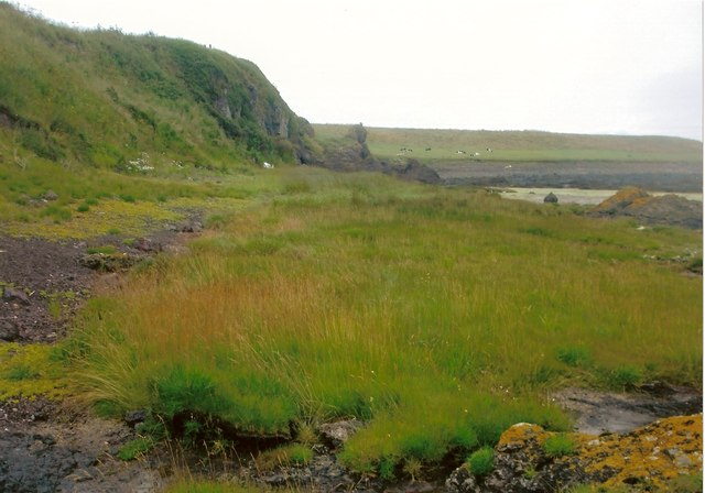 Perched salt marsh near Fishtown of Usan