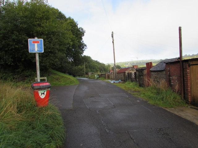 Newbridge Road Dog Park Nazi