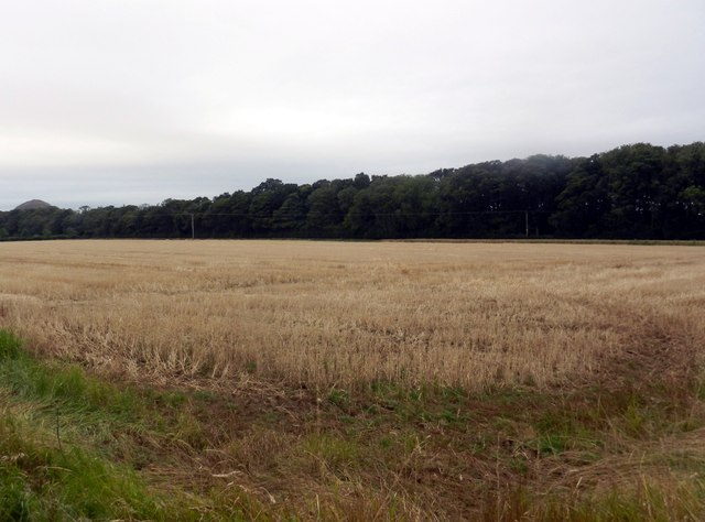 Farmlands at Halfland Barns near Auldhame in East Lothian