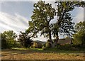 SO2142 : Morning sunlight at The Barn : Week 38