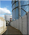 TQ3979 : Path at Greenwich Peninsula : Week 39