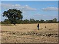 SU2889 : Footpath across fields near Longcot : Week 39