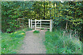 SU8467 : Footpath Gate, Easthampstead by Alan Hunt