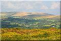SX6973 : Moorland in autumn, Ponsworthy, Devon by Oswald Bertram