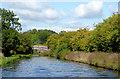 SJ8317 : Shropshire Union Canal south of Gnosall, Staffordshire by Roger  Kidd