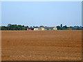 TL6156 : Barns at Westley Waterless by Robin Webster