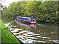 TQ0587 : Woteva, narrowboat of Tardebigge Old Wharf by David Hawgood