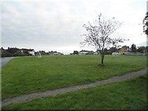 SU9395 : The Common, Winchmore Hill by David Howard