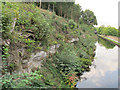 SE2734 : Canal cutting, Cunliffe Wood by Stephen Craven