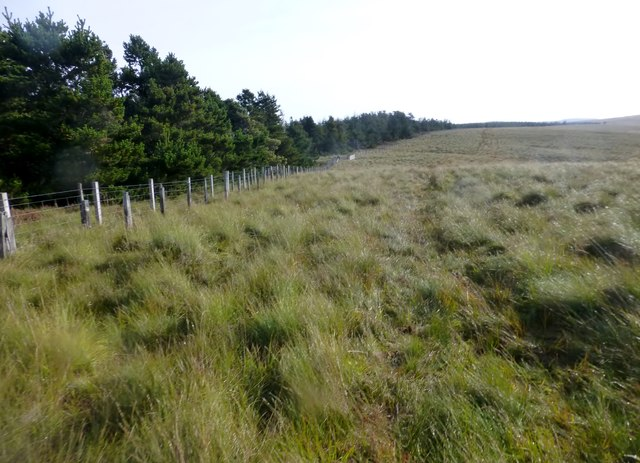 View Towards Fairwood Fell