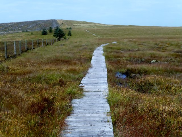 Boardwalk Looking Northward Towards Ogre Hill