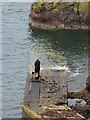 NT9069 : Angler on the jetty at Pettico Wick : Week 40