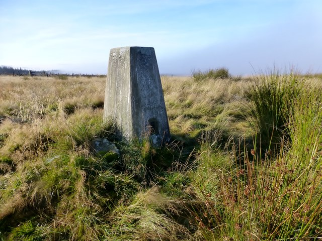 Wether Hill Trig Point
