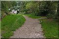 SU8457 : Track, Hawley Common by Alan Hunt