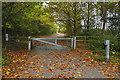 SU8357 : Access road, Hawley Common by Alan Hunt