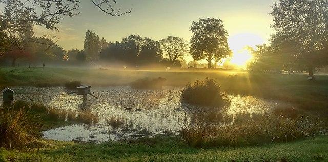 Bradmore Pond In Mist