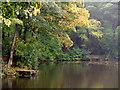 SJ4895 : Eccleston Top Dam : Week 42