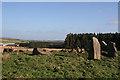 NJ5527 : Ardlair Recumbent Stone Circle (4) by Anne Burgess
