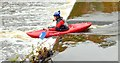 J3269 : Kayaking, Shaw's Bridge, Belfast - October 2015(1) by Albert Bridge