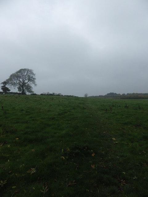 Footpath over fields near Hallington