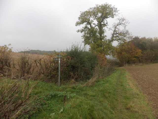 Footpath and Bridleway intersect