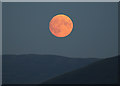 NT3224 : Moonrise over Eldinhope Knowe : Week 43