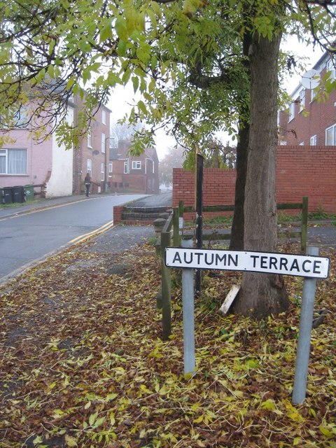 Autumn terrace philip halling geograph britain and for 27719 autumn terrace