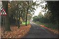 SJ7274 : On Back Lane by Anthony O'Neil