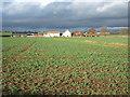 NZ1521 : Crop field towards SInk House Farm : Week 45