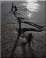 TA1128 : Humber mud, Hull : Week 45