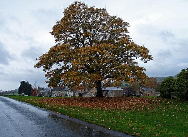 The Green, Ravensworth
