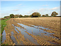 TG3002 : Puddle in stubble field by Avenue Farm : Week 45