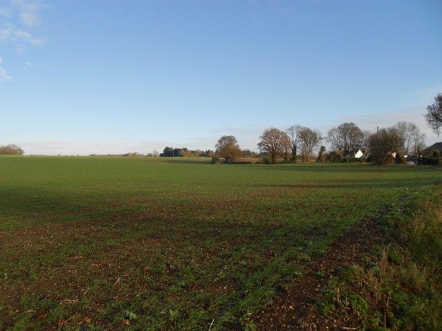 Codicote: Farmland at Codicote Heights
