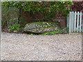 TM3556 : The Blaxhall Stone by Chris Holifield