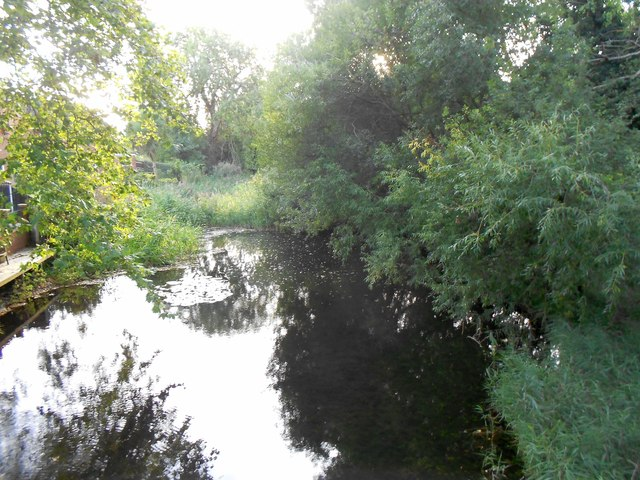 River Ash in Littleton (3)