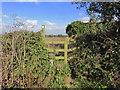 SJ8159 : Stile at Higher Smallwood Farm, Odd Rode by Colin Park