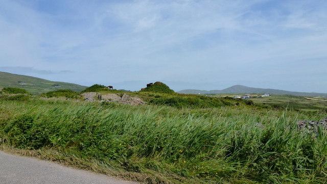 Horses on a rocky outcrop