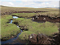 NN9588 : Tree stumps in the peat by Hugh Venables