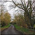 TL4162 : Girton: Washpit Road by John Sutton