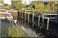 SU5266 : Monkey Marsh Lock by N Chadwick