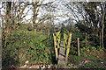 SP8109 : A Narrow Footbridge by Des Blenkinsopp