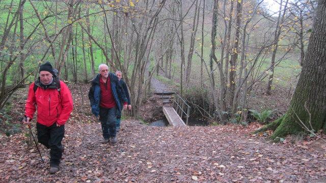 Footbridge over Tudeley Brook