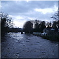 SE2336 : Extreme flood on the River Aire, from Newlay Bridge (3) by Rich Tea