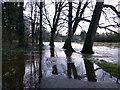 H4772 : Flooded path, Cranny : Week 1