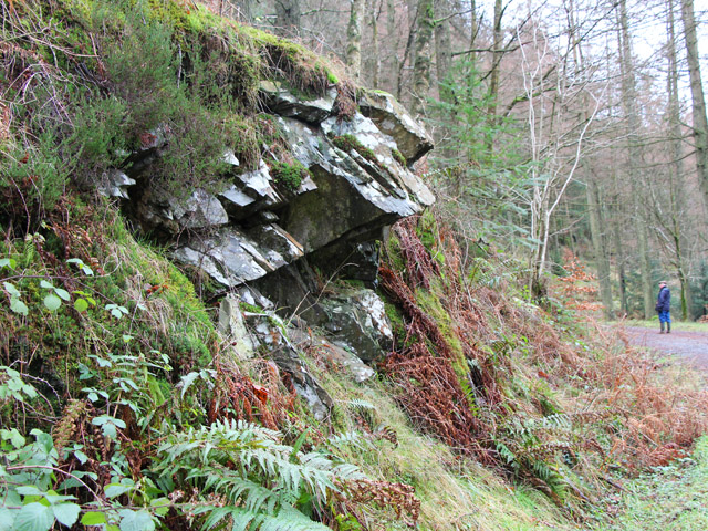 Rocky outcrop, Grizedale Forest