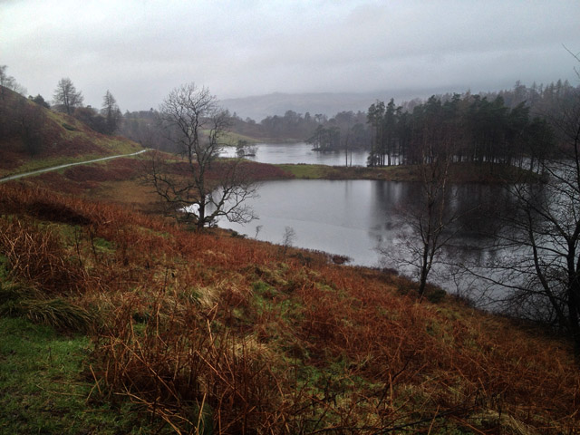 View from the perimeter path round Tarn Hows