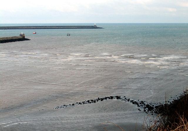 The SE fish trap in Fishguard Bay (2)