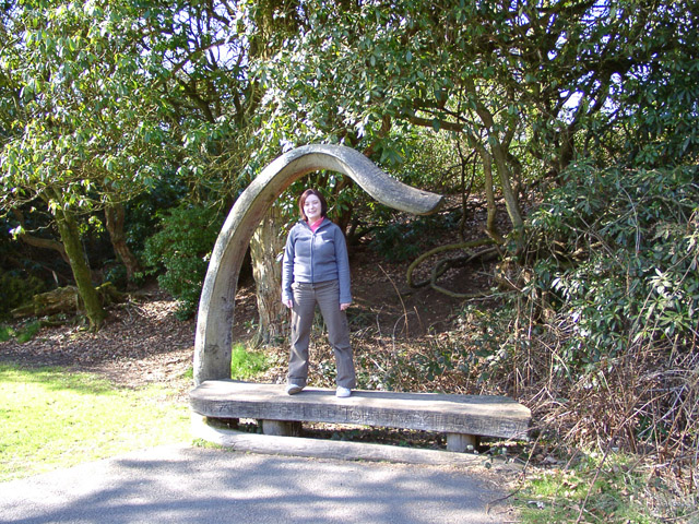 """John Mackie Seat"", Grizedale Forest"